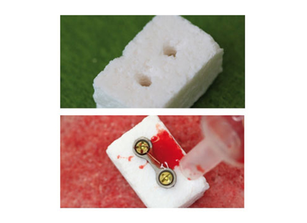 NanoBone® Blok